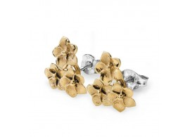 Entwined - Stud Earrings SFOR3G